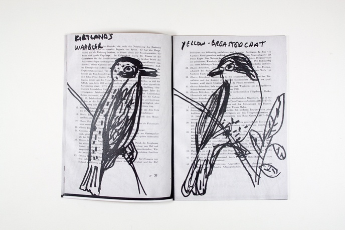 Bird Drawings thumbnail 2
