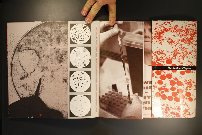 The Book of Plagues thumbnail 3