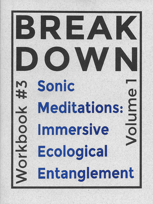 BREAK DOWN WORKBOOK #3: SONIC MEDITATIONS: IMMERSIVE ECOLOGICAL ENTANGLEMENT