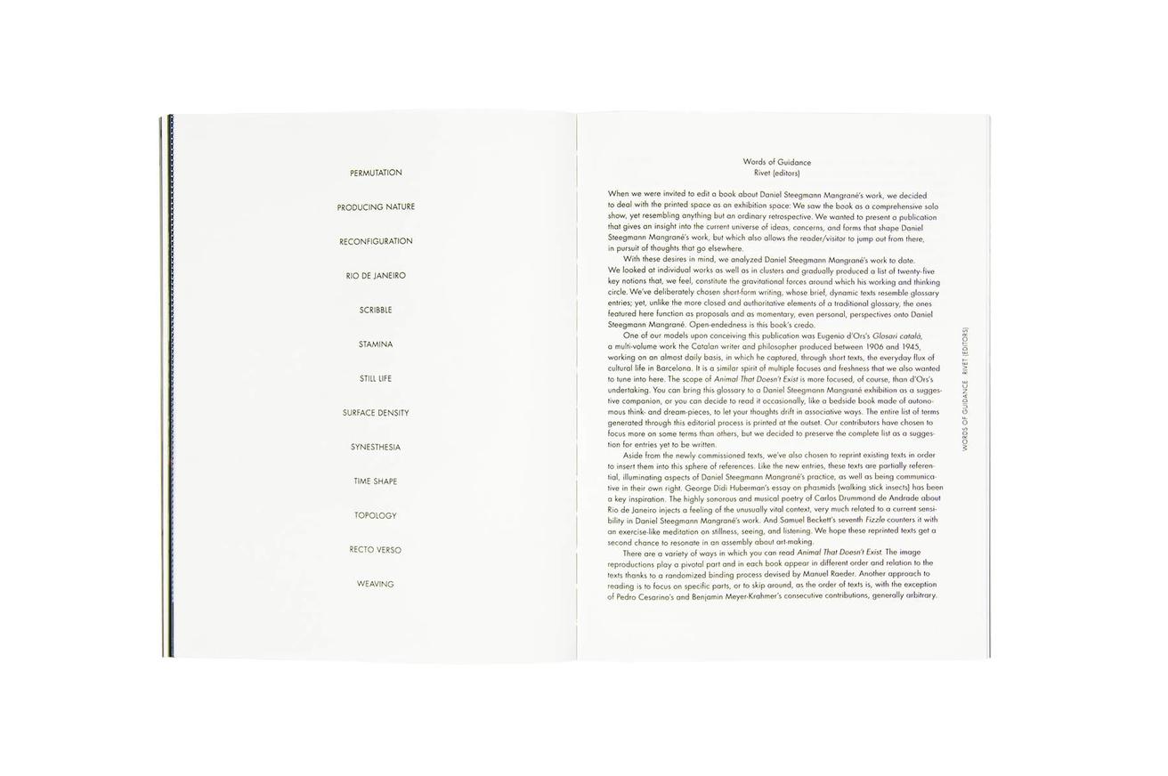 Daniel Steegmann Magrané : Animal That Doesn't Exist thumbnail 6