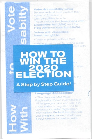 How To Win The 2020 Election