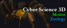 Cyber Science - Motion: Zoology