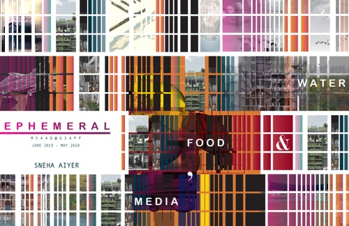AAD AiyerSneha SP20 Portfolio.pdf_P1_cover.jpg