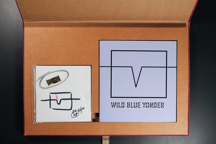 Wild Blue Yonder, 2002 thumbnail 2