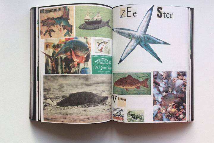 Animal Books For Jaap Zeno Anna Julian Luca thumbnail 2