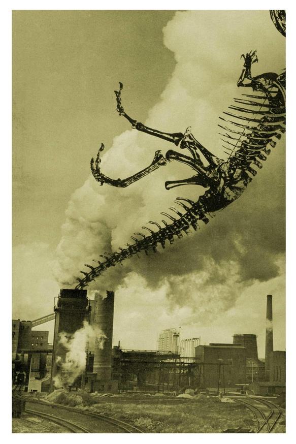 Fossil Fuels Print