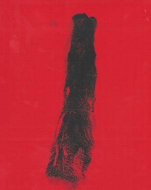 STH : Matthew Burcaw [Framed]