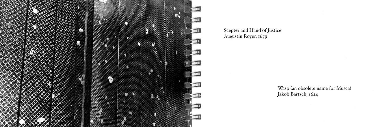 Sundial Spam Key thumbnail 3