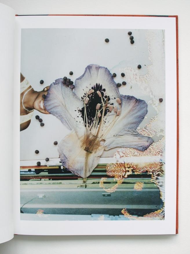 Hackney Flowers thumbnail 3