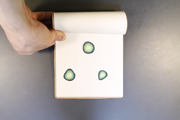 Three Green Rocks                                                                                                                                                                                                                                               thumbnail 4