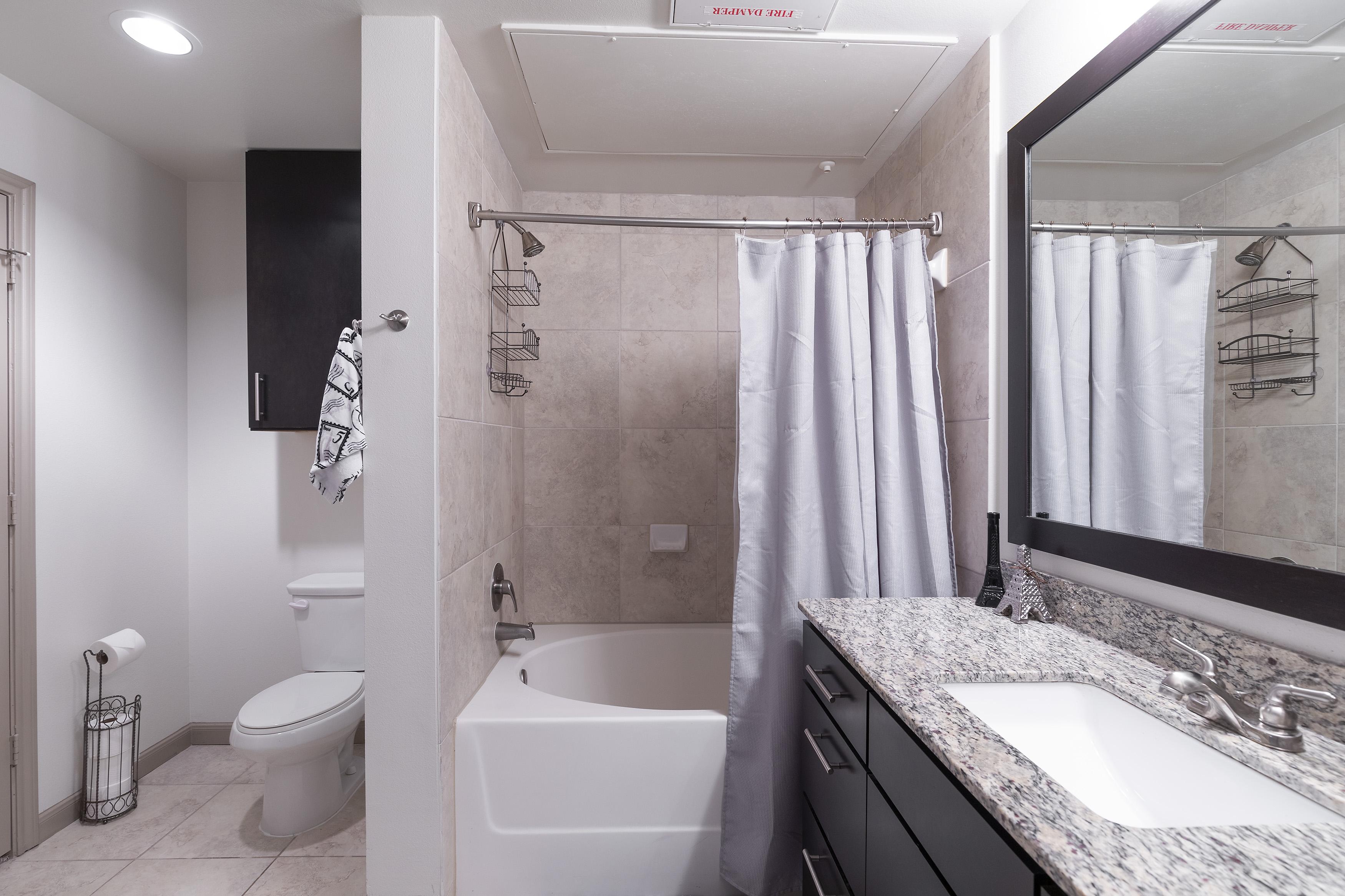 Apartment LUXURIOUS MIDTOWN PARISIAN CONDO photo 21441233