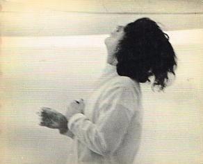 Terry Fox: University Art Museum, Berkeley