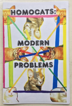 HOMOCATS: Modern Problems