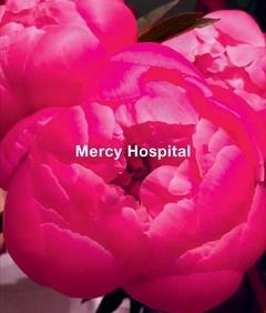 Ida Applebroog : Mercy Hospital
