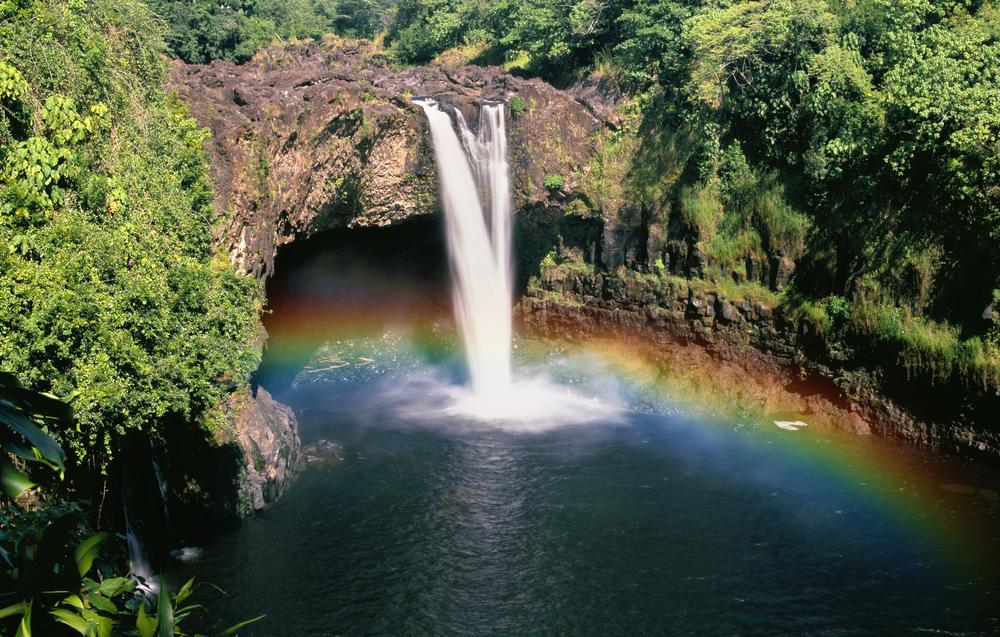 Apartment Mauna Loa 2 Bedrooms 2 Bathrooms photo 16949380