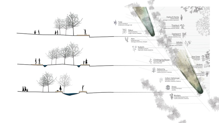 Detail: Bringing the permeable wetlands edge into the city center