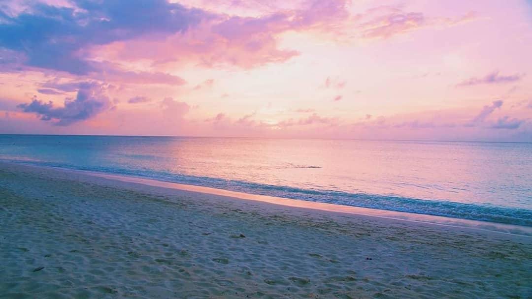 Beach Living at Seagull (BLA)