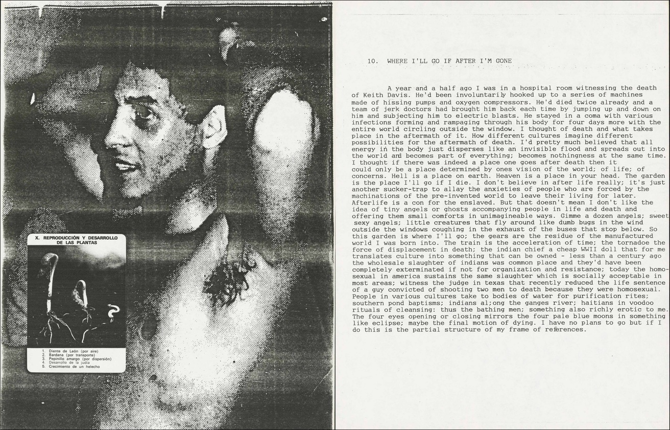 David Wojnarowicz: In the Shadow of Forward Motion thumbnail 7