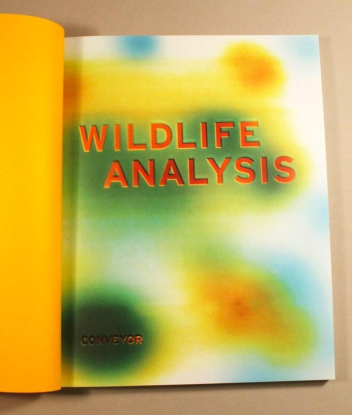 Wildlife Analysis thumbnail 3