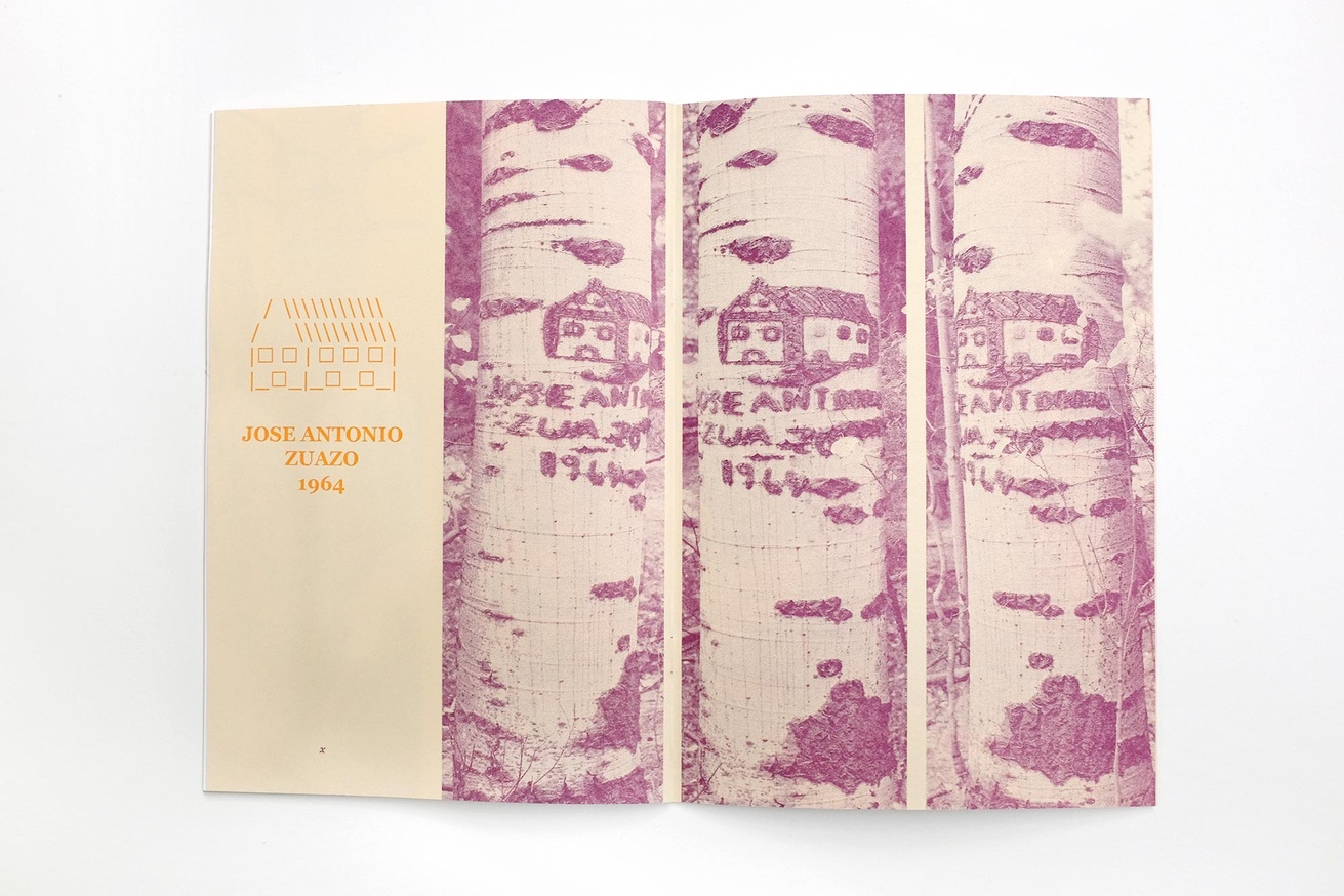 Written Names Fanzine #7: Names Carved into Aspen Trees by Sheepherders Sawtooth National Forest, Idaho thumbnail 4
