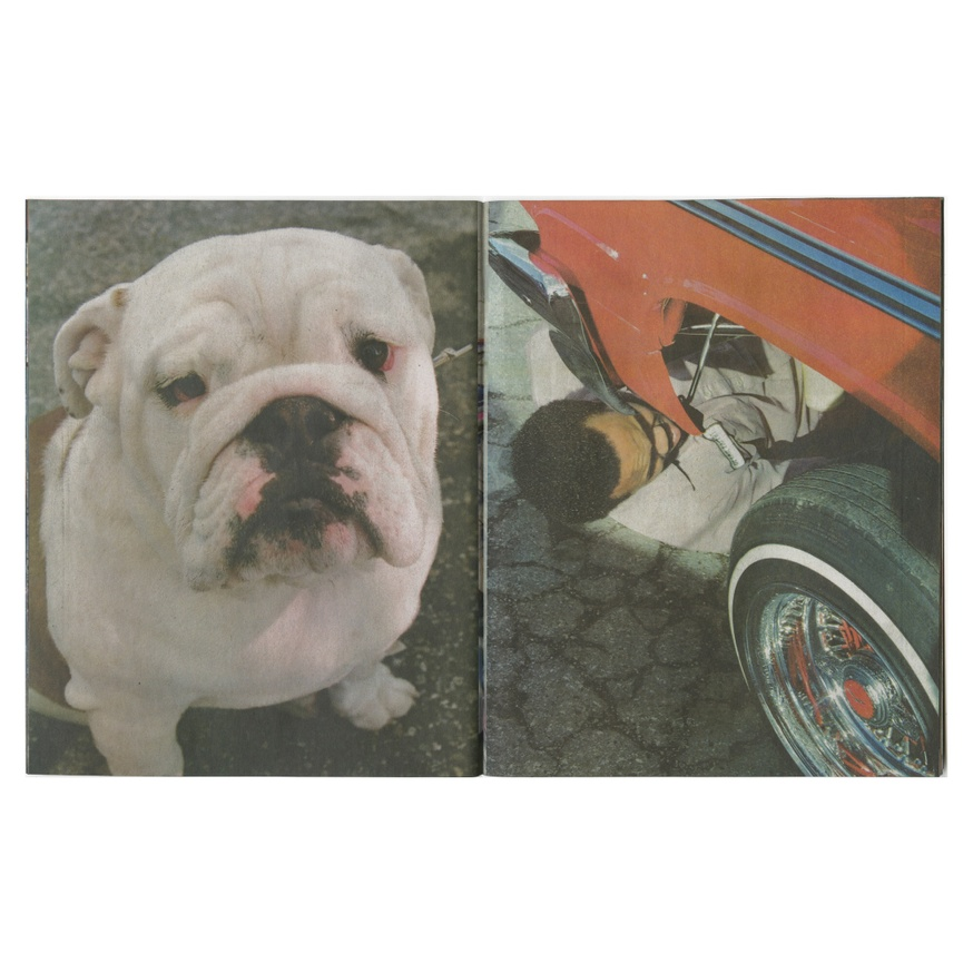 Untitled (Lowrider) thumbnail 1