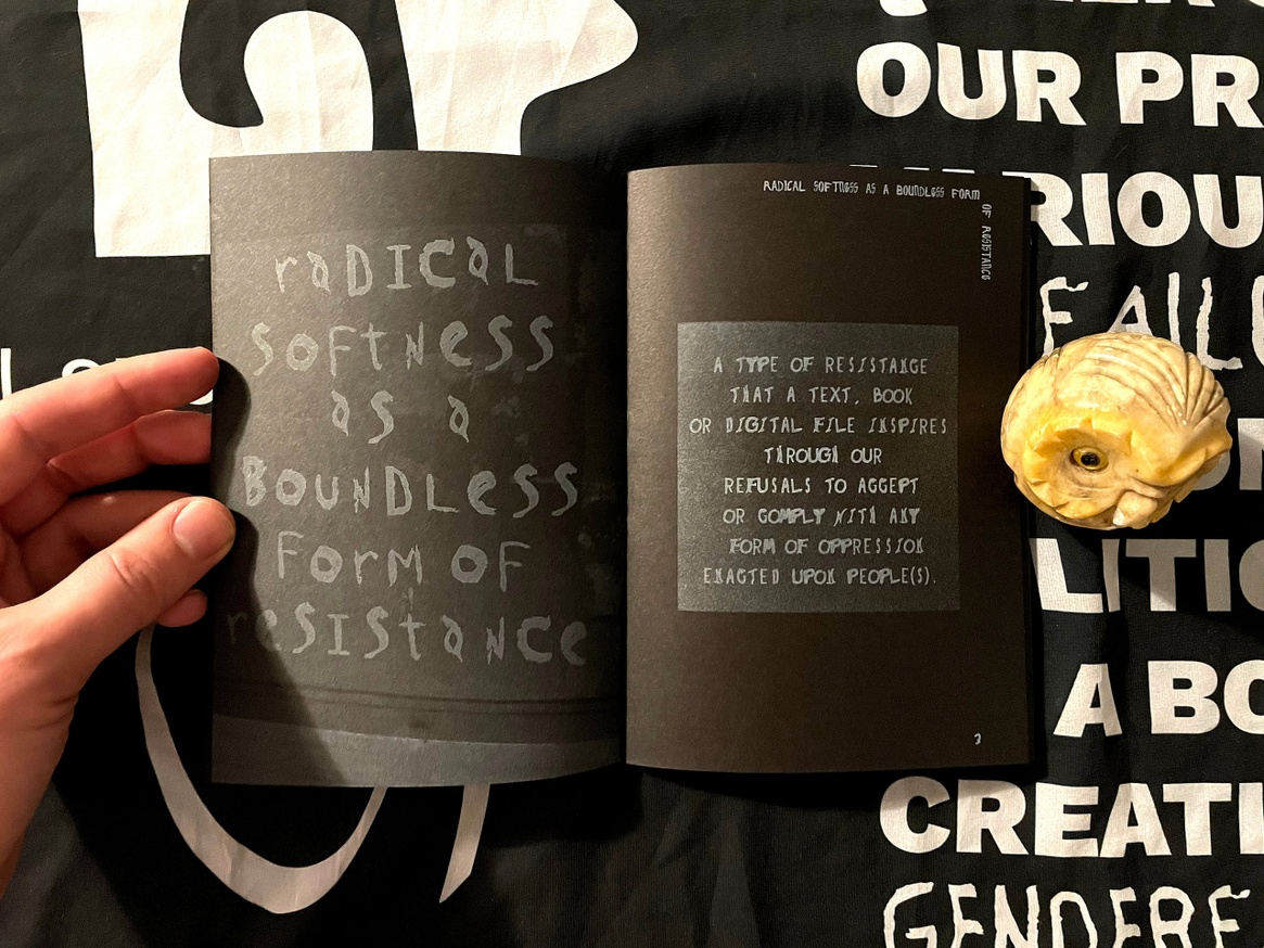 Some Definitions, Some Thoughts, Some Assertions, Radical Softness as a Boundless Form of Resistance thumbnail 3