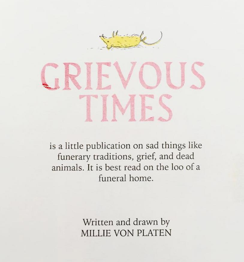 Grievous Times thumbnail 5