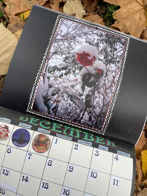 2021 Calendar thumbnail 2