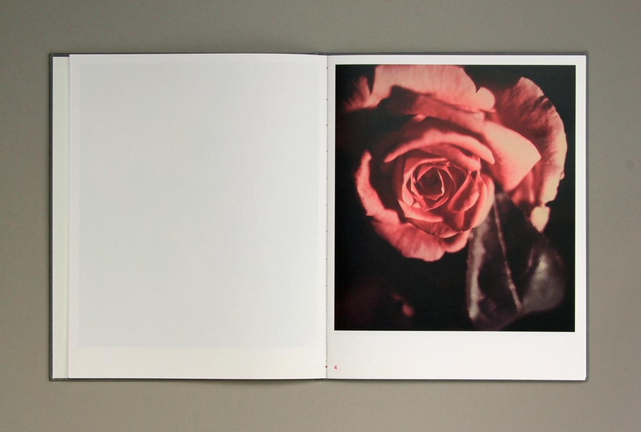 Gėlės thumbnail 5