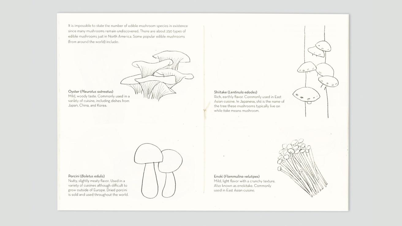 Mushrooms thumbnail 3