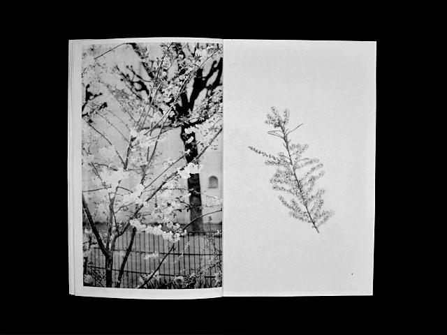 Peintures at Photographies: Histoire & Géographie familiale thumbnail 5