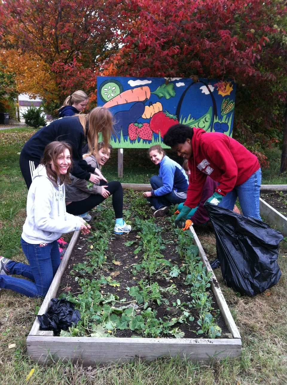 Students planting a raised bed garden in front of a mural.