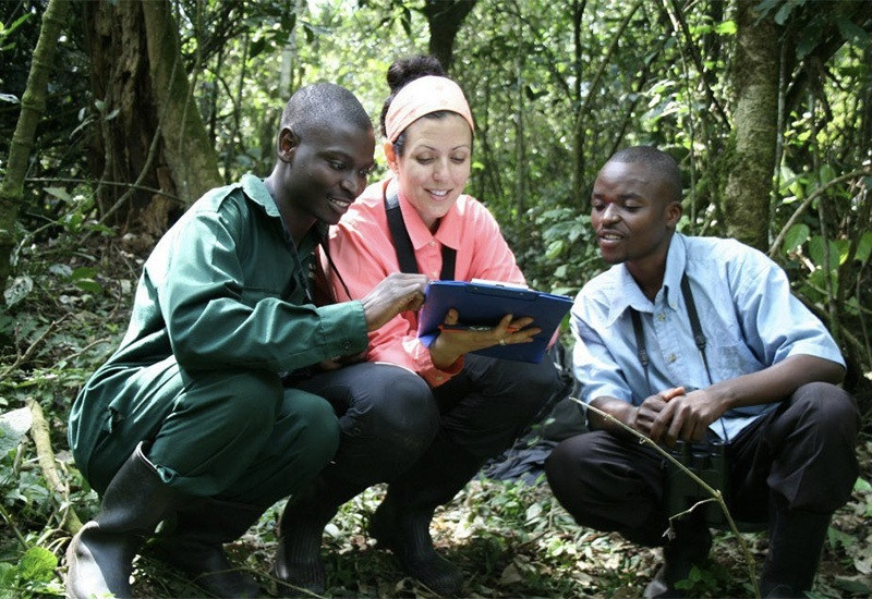 Three people in a lush forest squat and look over a clipboard.