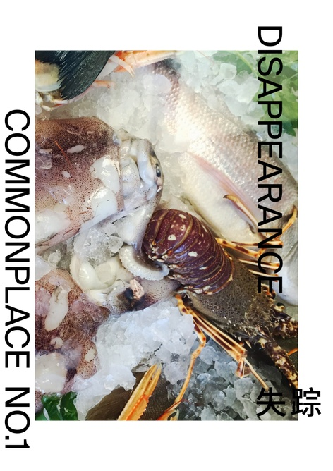 Commonplace Issue 1 - Disappearance  Launch Party