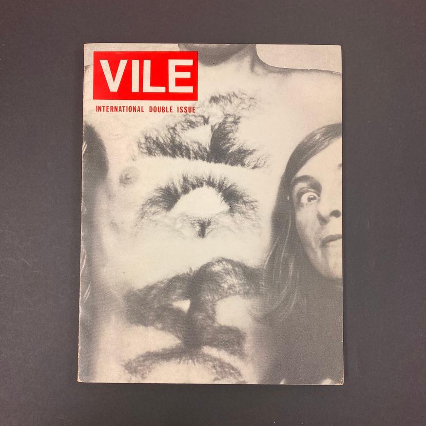 VILE thumbnail 1