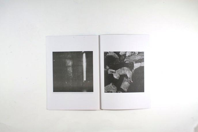 Cisne, No. 1 thumbnail 4