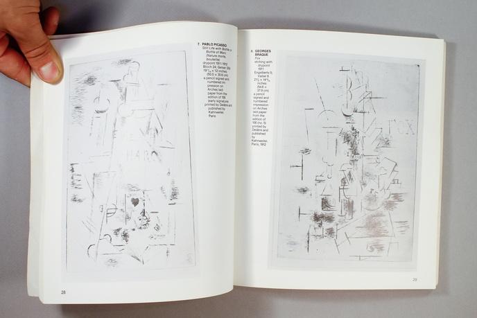 The Flue : Cubist Prints / Cubists Books thumbnail 8