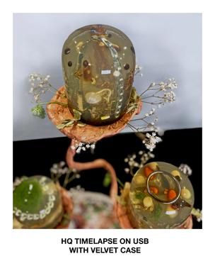 Limeflower Heterodoxy III, 2020