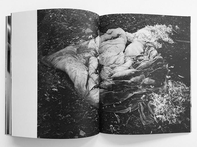Tar Beach Book