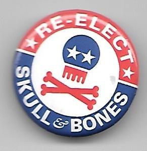 RE-ELECT SKULL & BONES Pin