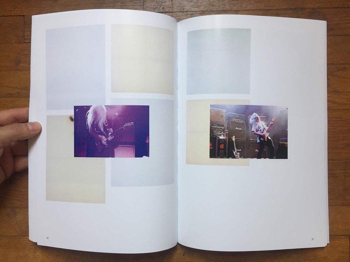 Altered Secession Catalogue - Michael Krebber (J Mascis) thumbnail 6