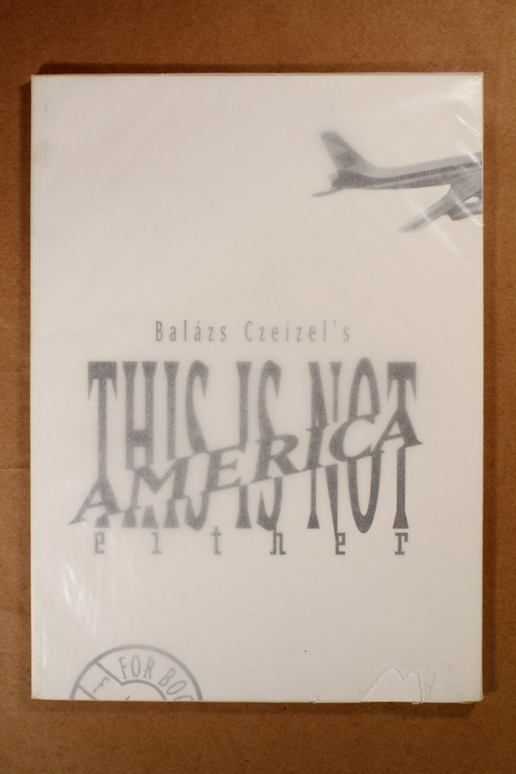 This Is Not America Either thumbnail 3