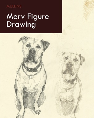Merv Figure Drawing