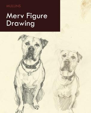 Merv Figure Drawing