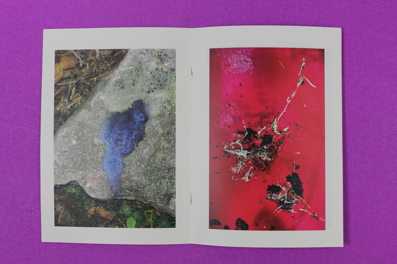 shit art by birds (antipodes 009) thumbnail 3