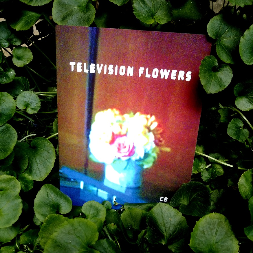 Television Flowers