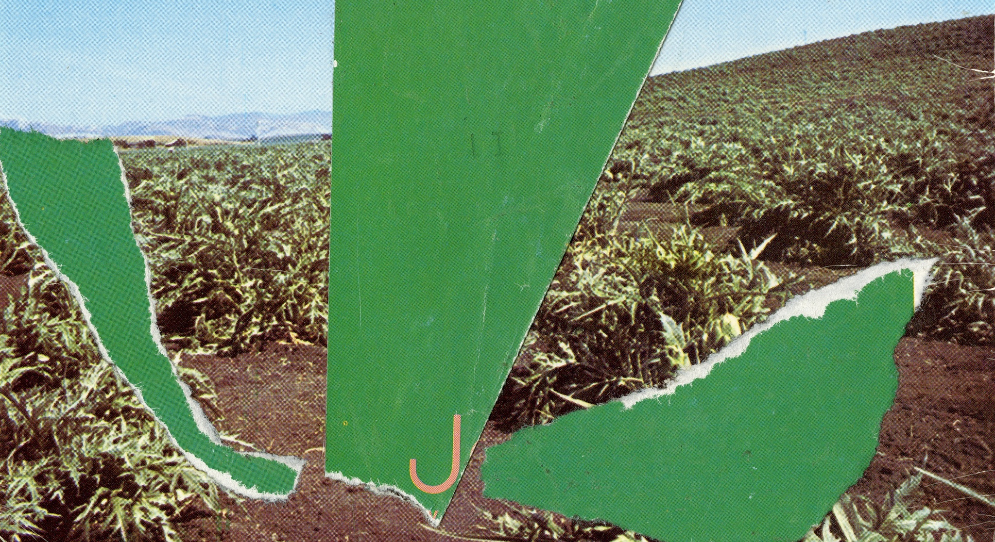 Three green abstract shapes are collaged onto a photographic landscape on a rectangular postcard.