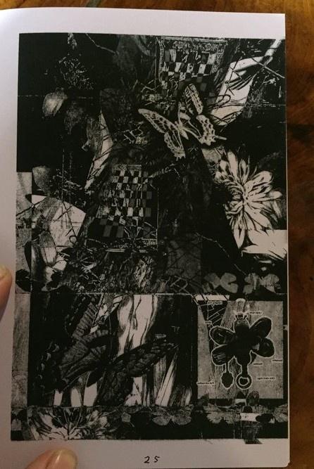 Butterfly Book thumbnail 3