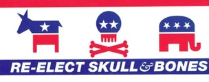RE-ELECT SKULL & BONES Bumper Sticker