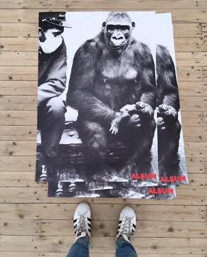 Daddy Poster Series (Gorilla)